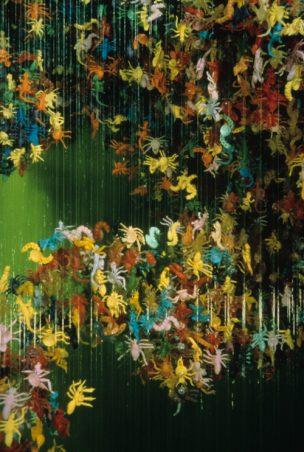 Entomology (v1), 1994
